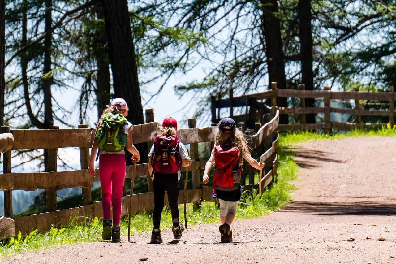 Grupka dzieci na wędruje po górach